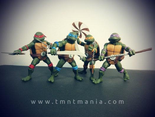 Imagen de las 4 tortugas en grupo